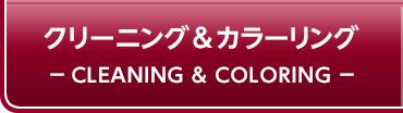 クリーニング&カラーリング CLEANING&COLORING